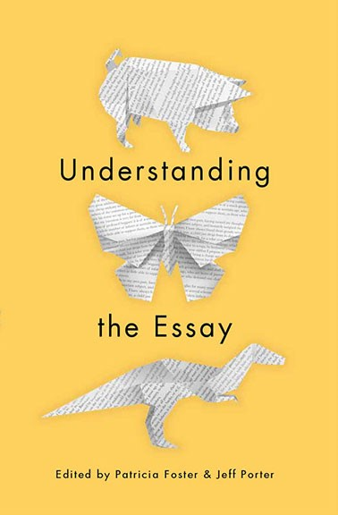 understanding the essay book cover